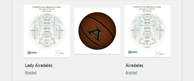 Lady Airedales