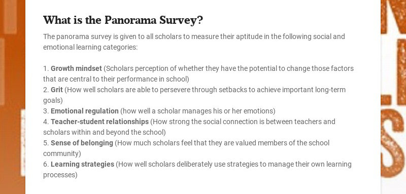 What is the Panorama Survey?
