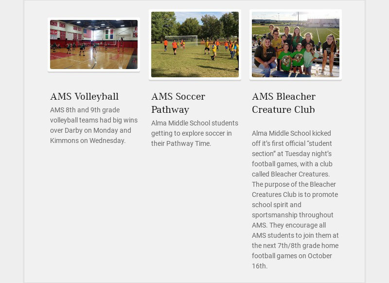 AMS Volleyball