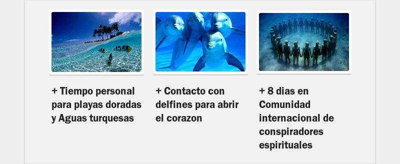 + Tiempo personal para playas doradas y Aguas turquesas+ Contacto con delfines para abrir el...